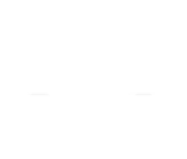 logo PLM blanc